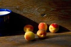 Aprikors i ljuset av inställningssolen Royaltyfri Fotografi