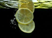 Aprikors i vatten Fotografering för Bildbyråer