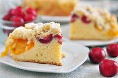 Aprikos Cherry Streusel Cake royaltyfria bilder