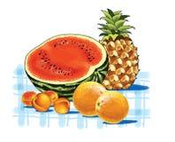 Aprikos för ananasvattenmelonapelsin Arkivfoton