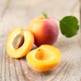 Aprikosar med leaves royaltyfria bilder