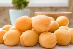 aprikosar ny fruktgrupp Royaltyfria Bilder