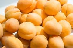 aprikosar ny fruktgrupp Arkivbild