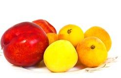 Aprikosar och nektariner Royaltyfria Foton