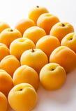 Aprikosar på vitbakgrund Arkivfoto