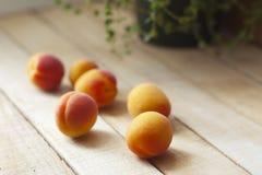 aprikosar table trä Selektivt fokusera Arkivfoto