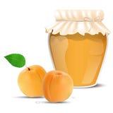 Aprikosdriftstopp i en krus och nya aprikors Royaltyfri Fotografi