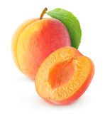 aprikose Lizenzfreies Stockbild