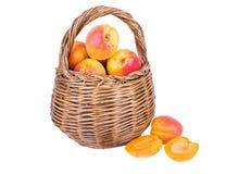 Aprikose im Korb Lizenzfreie Stockbilder