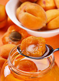 Aprikose im Löffel Stockfotografie