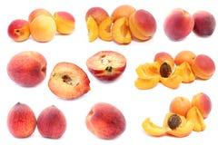 Aprikose und Pfirsich Stockbild