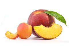 Aprikose und Pfirsich Lizenzfreies Stockfoto