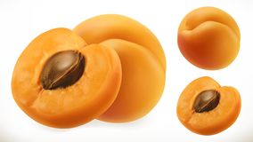 aprikose Vektorikone der frischen Frucht 3d stock abbildung