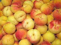 aprikosen Stockfotos