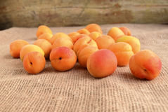 aprikosen Stockbilder