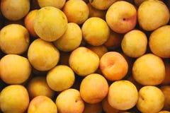 Aprikosen auf dem Markt Stockfoto