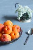 Aprikosen auf der Platte, weiße Blumen auf konkretem Hintergrund Stockbild