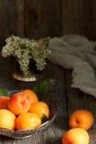 Aprikosen auf der Platte, weiße Blumen, hölzerner Hintergrund Stockfoto