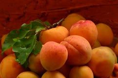 Aprikosen auf ländlichem braunem Hintergrund Lizenzfreie Stockfotos