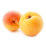 aprikosen bär fruktt leaves Royaltyfri Foto