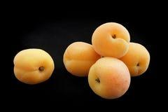 Aprikosen der gelben Farbe auf einem schwarzen Hintergrund Stockbild