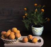 Aprikosen in der Schüssel und in den Blumen Stockfotografie