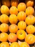 Aprikosen, die in einem Kasten sitzen Stockfotografie