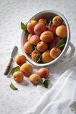 Aprikosen in einem Sieb Lizenzfreie Stockfotografie