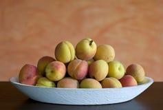 Aprikosen in einem weißen fruitbowl Stockbild