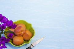 Aprikosen in einer grünen Schüssel Stockfotografie