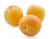 Aprikosen getrennt auf einem weißen Hintergrund Stockfoto