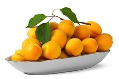 Aprikosen, getrennt auf weißem Hintergrund Stockbild
