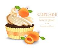 Aprikosen-kleiner Kuchen lokalisiert auf einem weißen Hintergrund Realistischer Nachtisch des Vektors Köstliche Festlichkeit des  stock abbildung