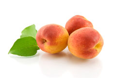 Aprikosen mit grünen Blättern Stockbilder
