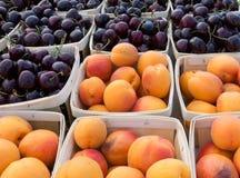 Aprikosen- und Bing-Kirschen Stockfotos