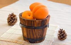 Aprikosen und Kiefernkegel auf einem weißen Hintergrund Lizenzfreie Stockfotos
