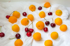 Aprikosen und Kirschbeeren am weißen Hintergrund stockfotografie