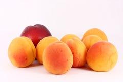Aprikosen und Nektarine Lizenzfreie Stockfotos