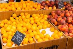 Aprikosen und Pfirsiche Stockfotos