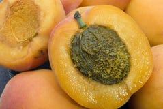 Aprikosenfrucht Stockfoto