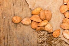 Aprikosenkerne Lizenzfreie Stockfotos