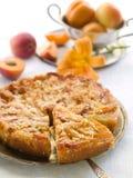 Aprikosenkuchen Stockfotografie
