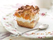 Aprikosenkuchen stockfoto