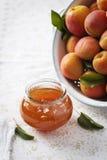 Aprikosenmarmelade mit frischen Aprikosen im Hintergrund Stockbild
