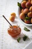 Aprikosenmarmelade mit frischen Aprikosen im Hintergrund Stockfotografie