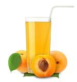 Aprikosensaft Lizenzfreie Stockbilder