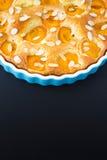 Aprikosentörtchen in der Kuchenform Stockfoto