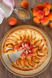 Aprikosentörtchen verziert mit Mandel Lizenzfreies Stockbild