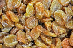 aprikosfrukt bevarade Fotografering för Bildbyråer