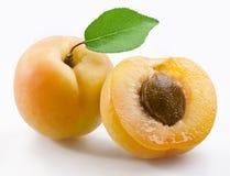 aprikosleaves arkivbild